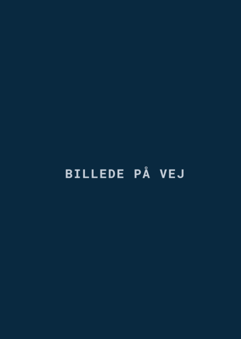 bilpåvej-2-470×660